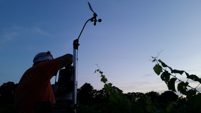 microclimate weather station vineyard web