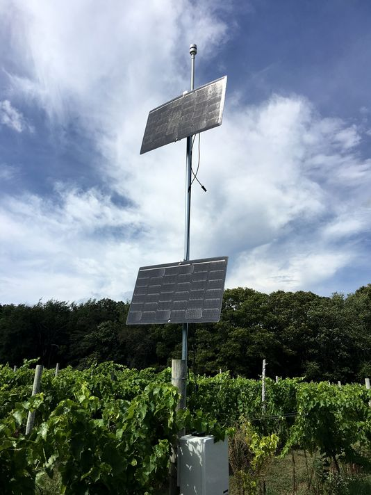 vineyard-iot-weather-station