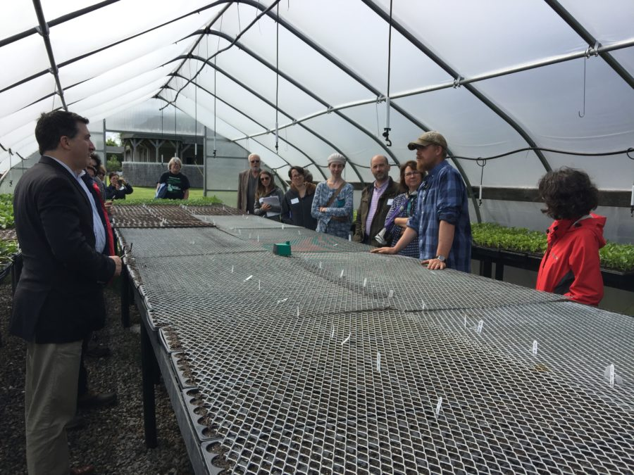 Greenhouse Sharing the Harvest